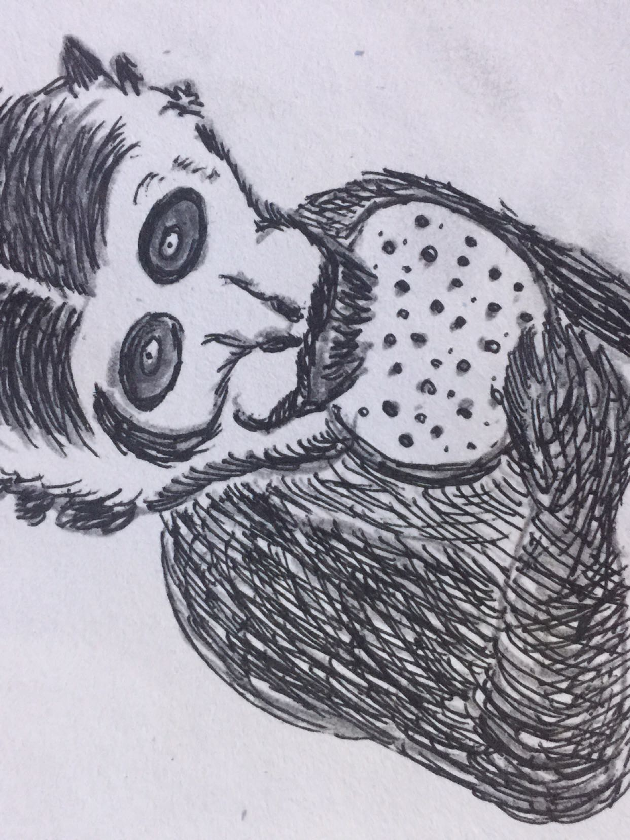 素描猴子头像图 可爱